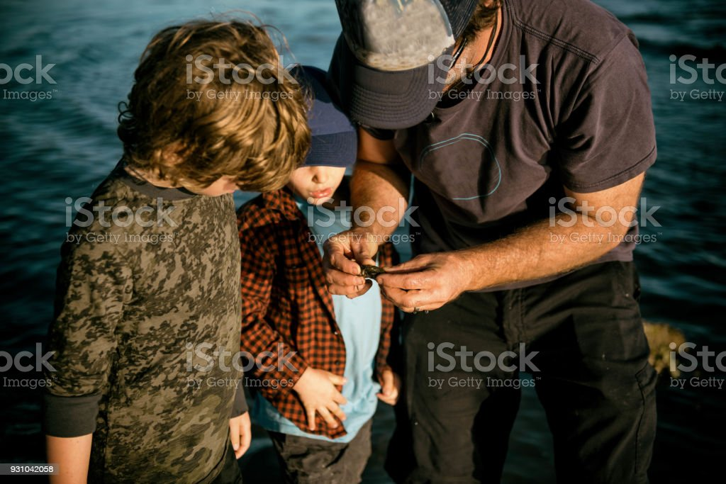 Father showing sons a crab at sunset stock photo