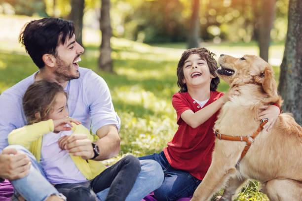 vater, zwei kinder und ein hund im park - kinder picknick spiele stock-fotos und bilder