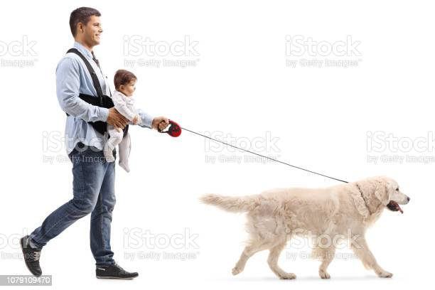 Father walking a dog and carrying a baby in a carrier picture id1079109470?b=1&k=6&m=1079109470&s=612x612&h=kcxdnx67dtiv3wqeqoj2ykozw0lwonenhc2emyuigd0=