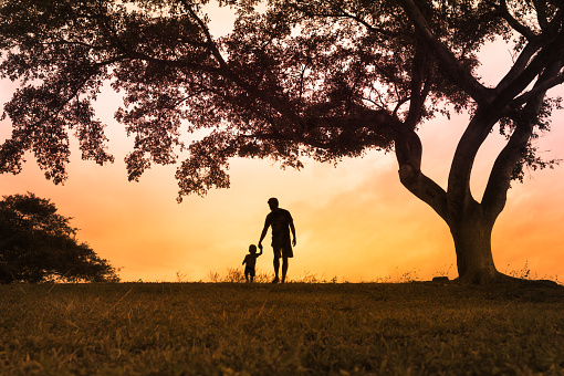 istock Father walking with is son at the park at sunset 1017117062