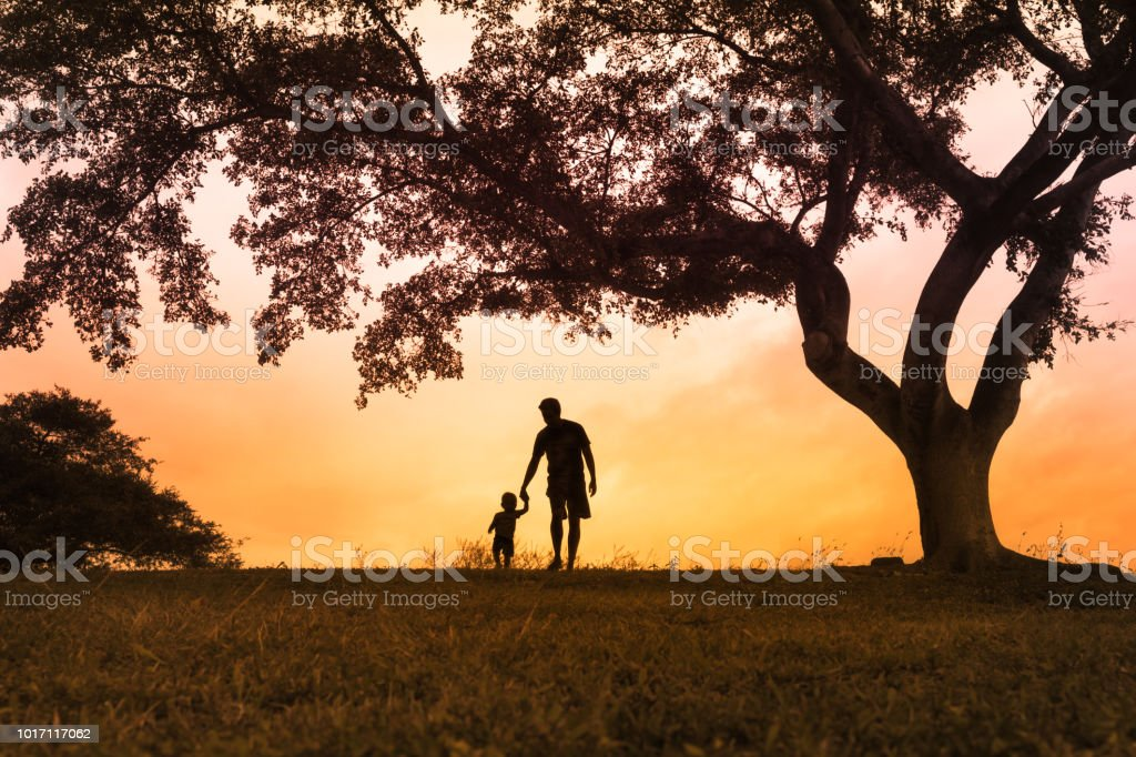 Father walking with is son at the park at sunset stock photo