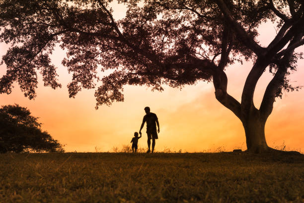 Father walking with is son at the park at sunset Father walking together with his little boy outdoors at sunset father stock pictures, royalty-free photos & images