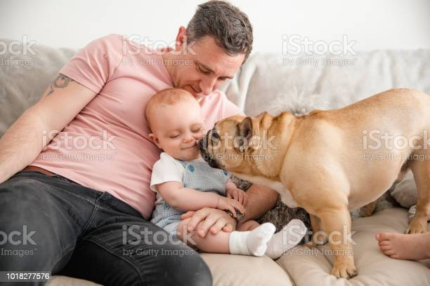 Father watching french bulldog and son play together picture id1018277576?b=1&k=6&m=1018277576&s=612x612&h=k6 iz6dovqx 8qy3ct3sndflskxsfs4 xxf3pjlqflk=