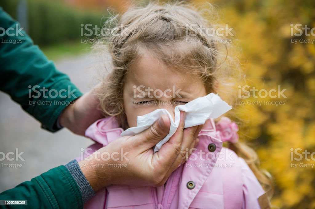 Father wiping daughter's nose with handkerchief stock photo
