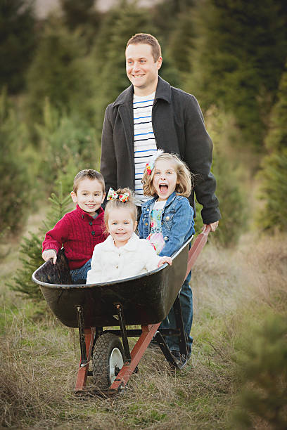 Father with children in wheelbarrow at Christmas Tree Farm . stock photo