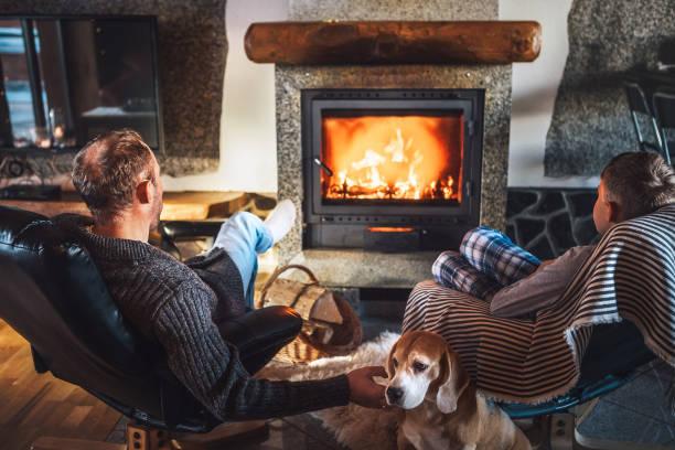 Padre con hijo sentado en cómodos sillones en su acogedora casa de campo cerca de chimenea y disfrutando de un ambiente cálido y movimientos de llama. Su perro amigo beagle sentado al lado de piel de oveja blanca. - foto de stock