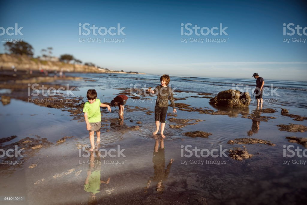 Father with sons in tide pools stock photo