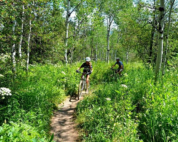 Father-Daughter Mountain Bike Ride A father and daughter mountain bike through the Aspen trees in the Colorado Rocky Mountains. steamboat springs stock pictures, royalty-free photos & images