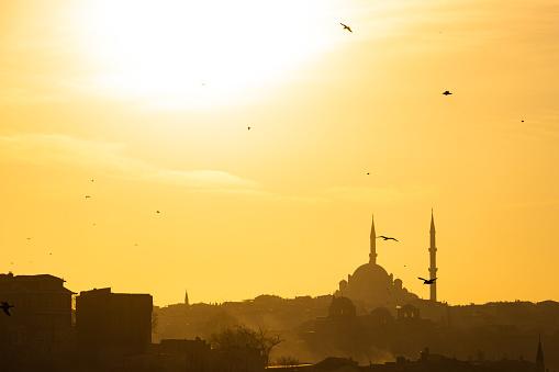 Fatih Mosque at Sunset