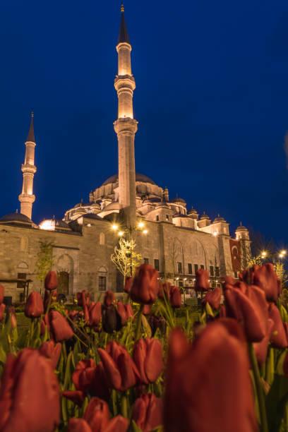 Fatih Mosque, Istanbul, Turkey stock photo