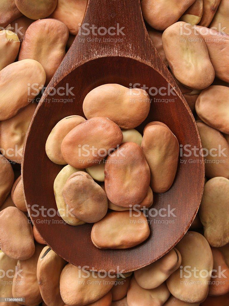 Fava beans royalty-free stock photo