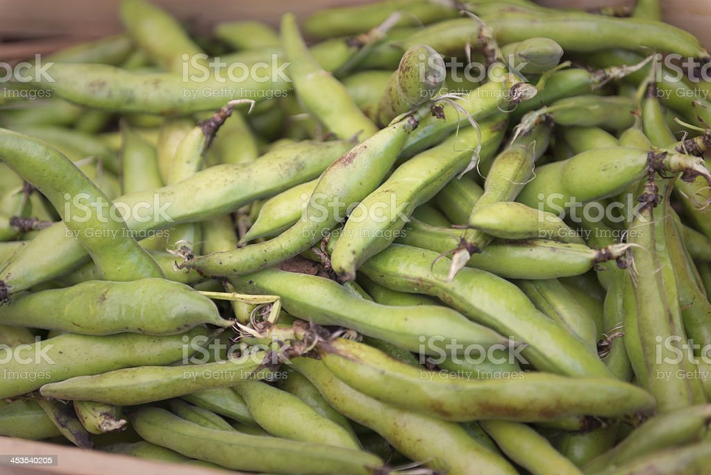 Fava or Broad Beans at a Farmers Market royalty-free stock photo