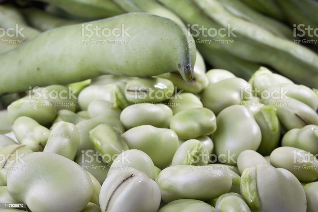 fave royalty-free stock photo