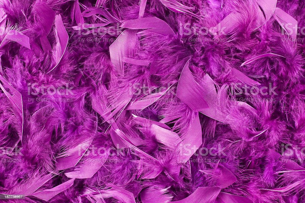 Feather Background royalty-free stock photo