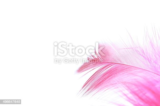 istock feather background 496647645