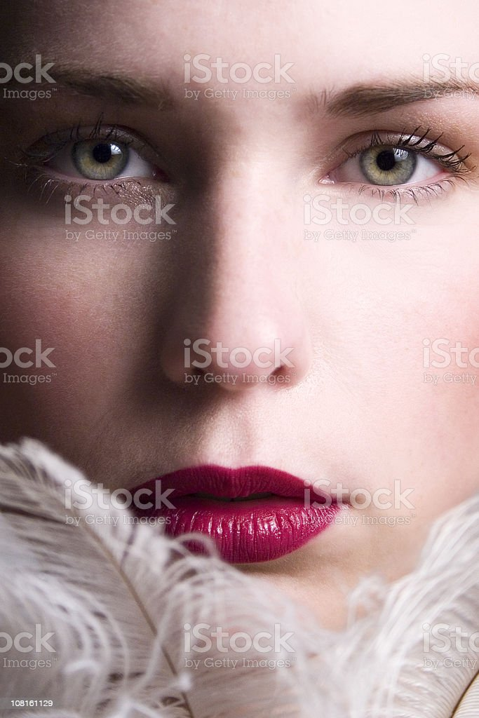Feather beauty stock photo