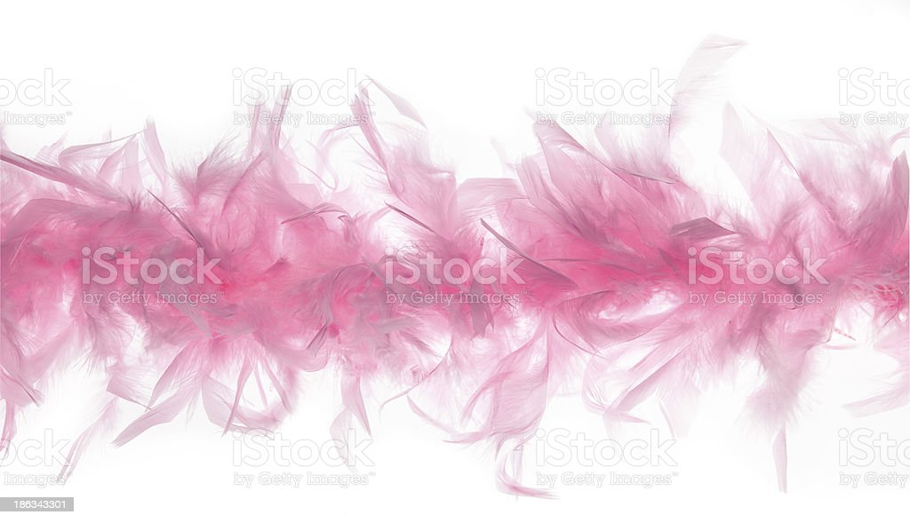 Feather Boa Strand stock photo