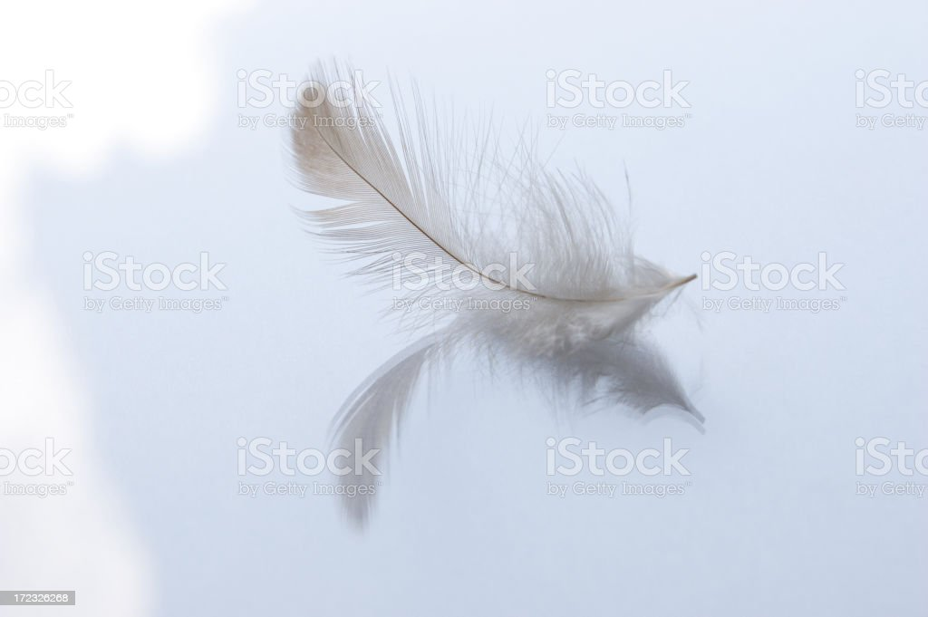 Feather dream 2 royalty-free stock photo