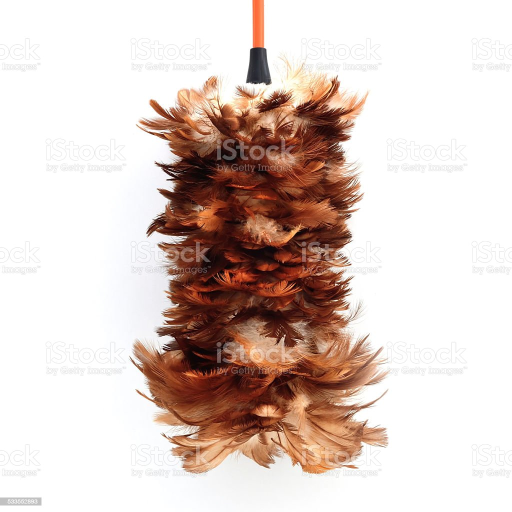 feather duster isolate on white background stock photo