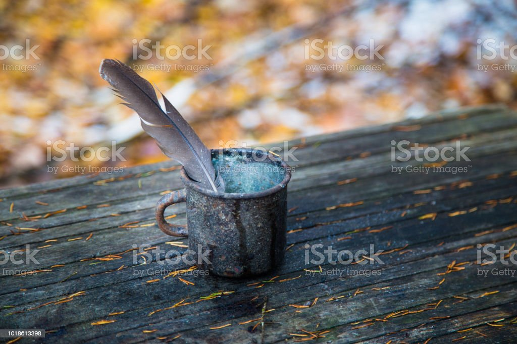 feather in mug stock photo