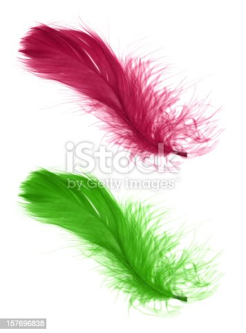 Pink and green feathers isolated on white background.
