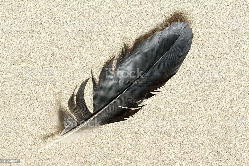 Feather On Sand stock photo