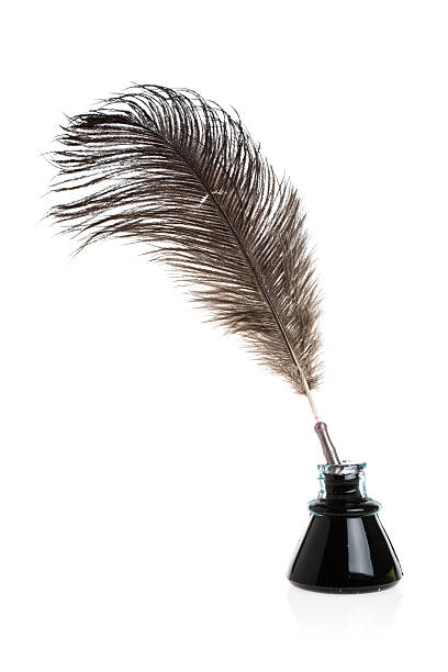 feather quill - quill stock photos and pictures