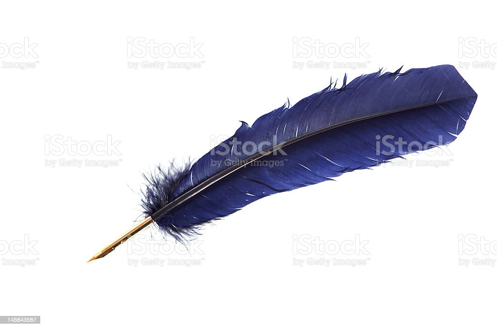 Feather quill royalty-free stock photo