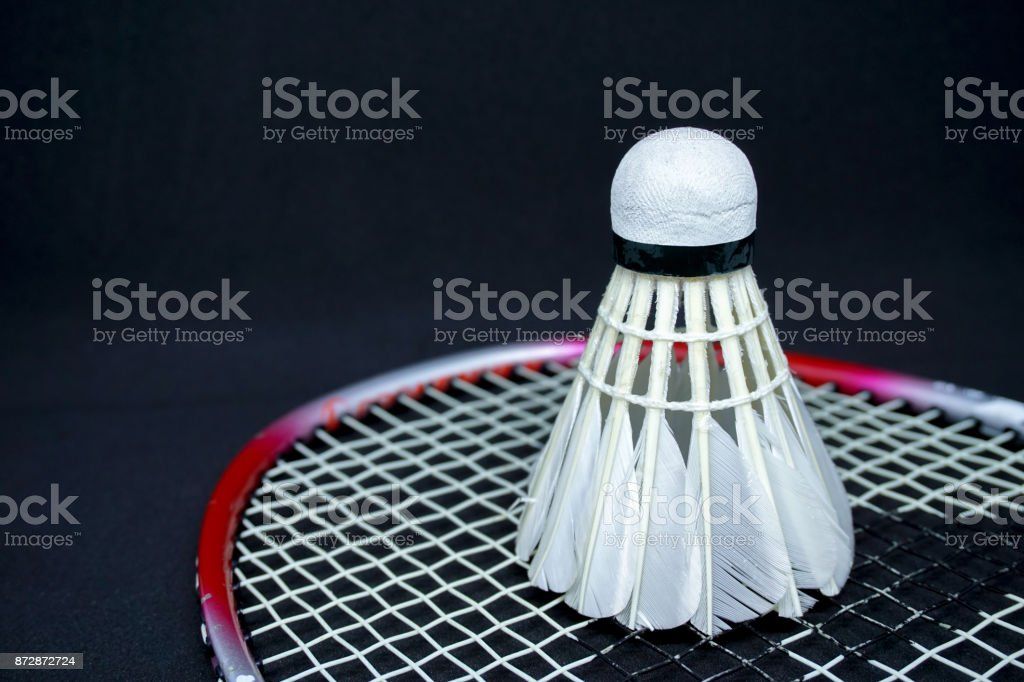 Feather Shuttlecock on A Badminton Racket on Black Background stock photo