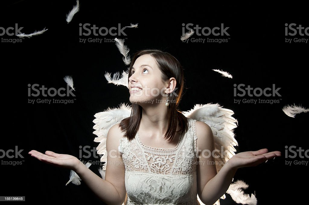 Feathers For An Angel From Heaven stock photo