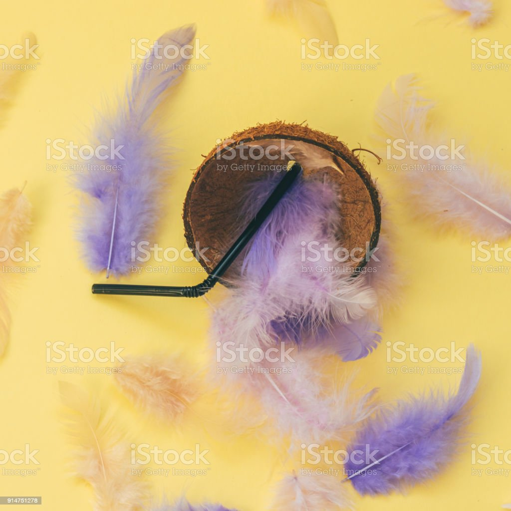 feathers inside the coconut with drinking straw stock photo