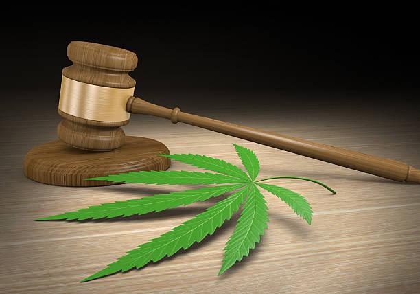 federalism and medical marijuana