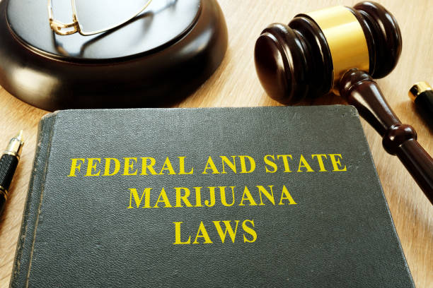 federal and state marijuana laws and gavel in a court. - legalizzazione foto e immagini stock