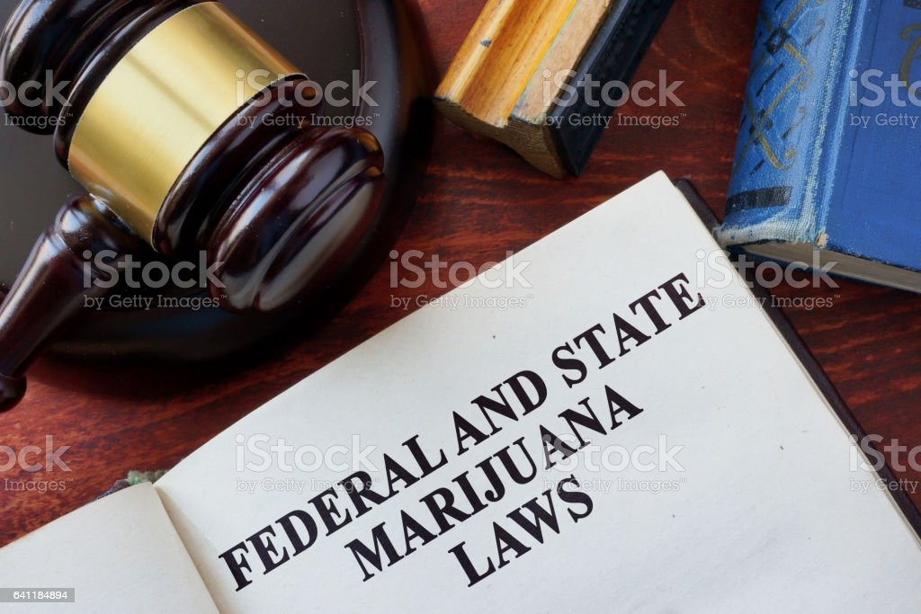 Federal and State Marijuana Laws and gavel. stock photo
