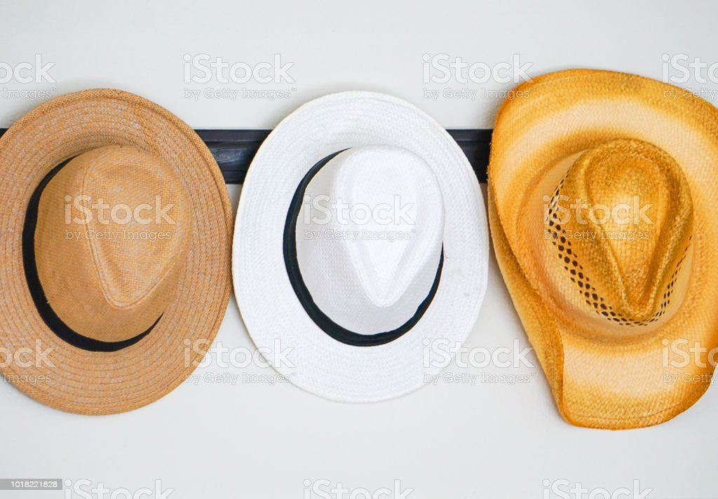 Fedora and Cowboy Hats stock photo