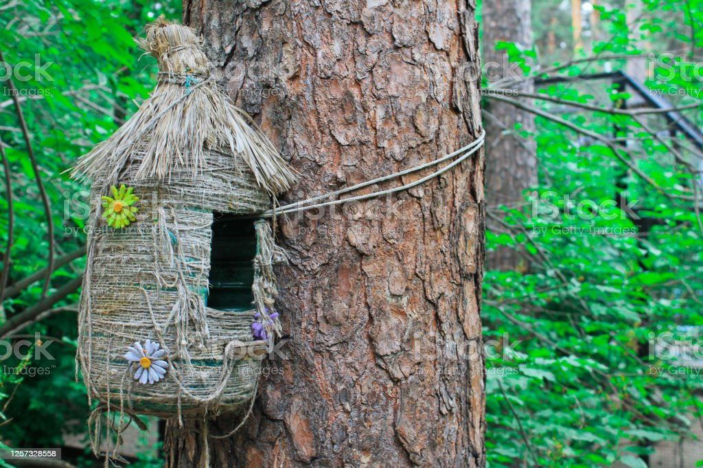 Feeder, decorative house for birds and squirrels, summer forest Feeder, decorative house for birds and squirrels, summer forest Backgrounds Stock Photo