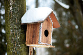Feeder for birds in snow in winter forest.