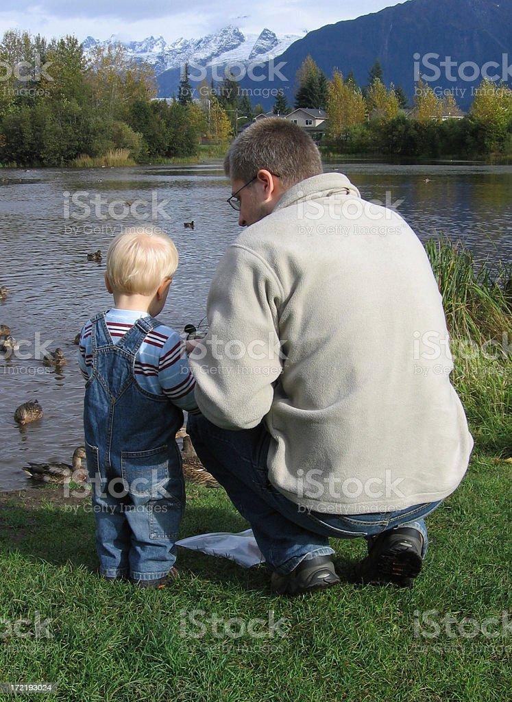Feeding Ducks royalty-free stock photo