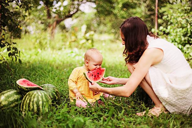 Feeding. stock photo