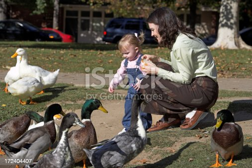 A mother and child feeding the Ducks and Geese at the park.