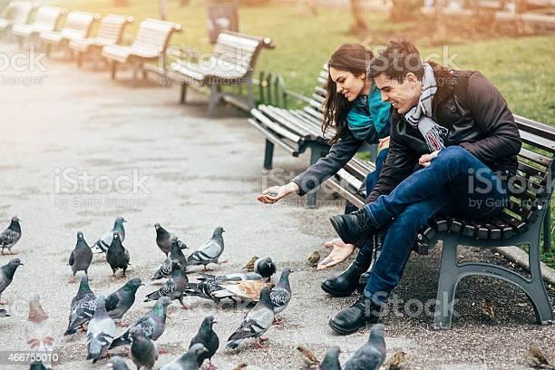 Feeding the pigeons picture id466755010?b=1&k=6&m=466755010&s=612x612&h=nuqaesfsdysu0wrklffsqigcreos8itmeyh8u5jpnbw=