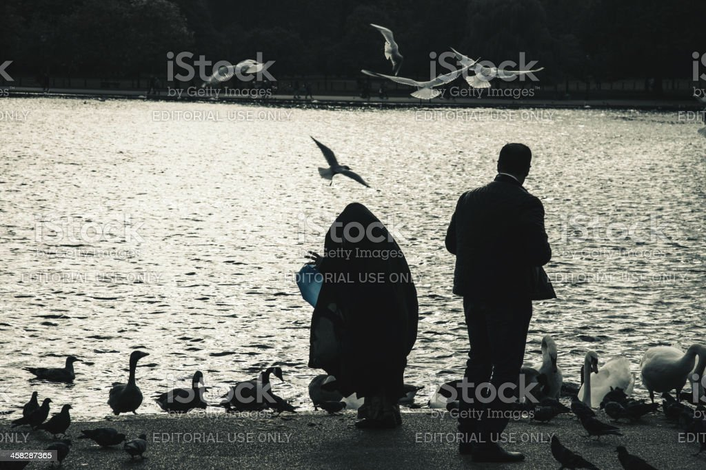Feeds the seagulls in Hyde Park royalty-free stock photo