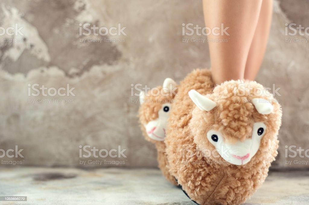 feet female wearing llama trendy slippers soft pastel colours beige – zdjęcie