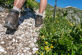 istock Feet in Hiking boots in Triglav national park 1284118104