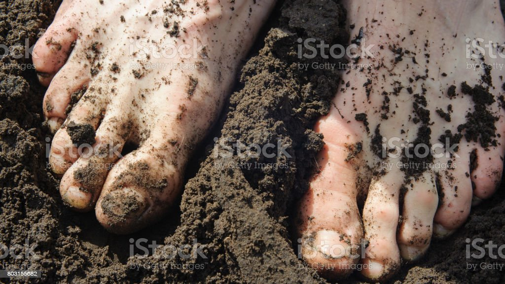 Feet in the earth stock photo
