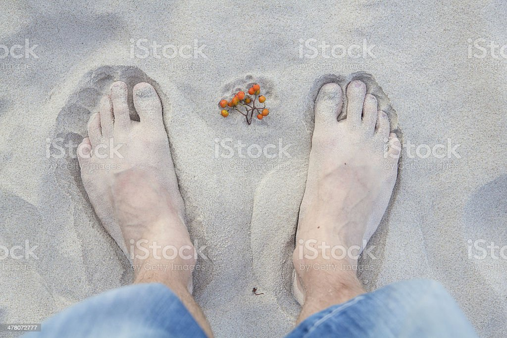 feet in the sand royalty-free stock photo