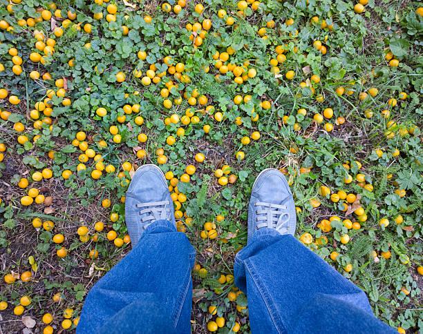 füße auf dem boden. - pflaumen jeans stock-fotos und bilder