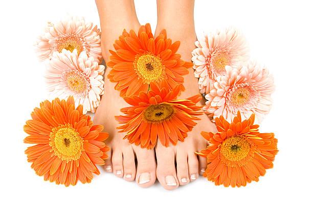 füße entspannen sie - wachsblume stock-fotos und bilder