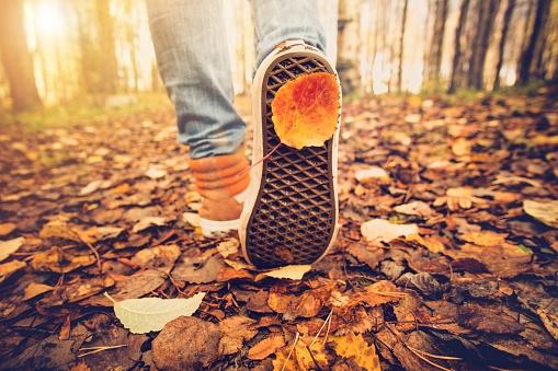 Feet sneakers walking on fall leaves Outdoor Autumn season stock photo