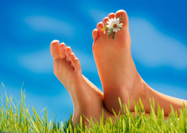 feet with flower between toes - scalzo foto e immagini stock